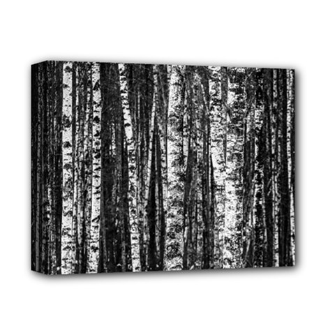 Birch Forest Trees Wood Natural Deluxe Canvas 14  X 11  by BangZart