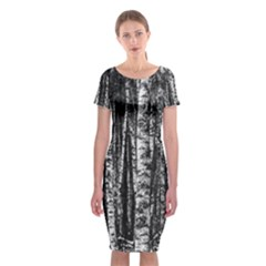 Birch Forest Trees Wood Natural Classic Short Sleeve Midi Dress by BangZart