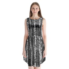 Birch Forest Trees Wood Natural Sleeveless Chiffon Dress