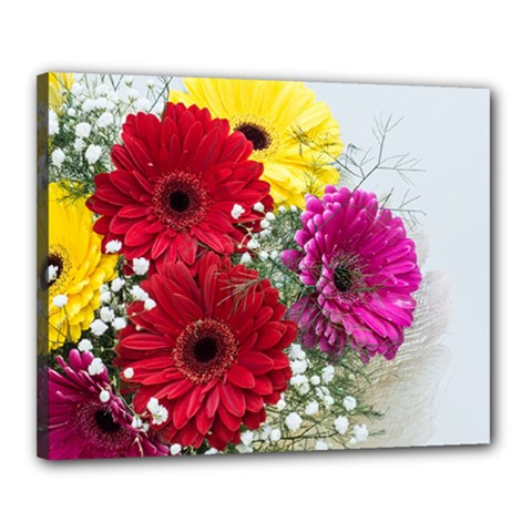 Flowers Gerbera Floral Spring Canvas 20  X 16  by BangZart