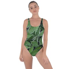 Texture Leaves Light Sun Green Bring Sexy Back Swimsuit