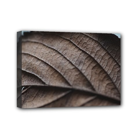 Leaf Veins Nerves Macro Closeup Mini Canvas 7  X 5  by BangZart