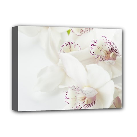 Orchids Flowers White Background Deluxe Canvas 16  X 12   by BangZart