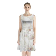 Orchids Flowers White Background Sleeveless Waist Tie Chiffon Dress