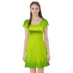 Radial Green Crystals Crystallize Short Sleeve Skater Dress