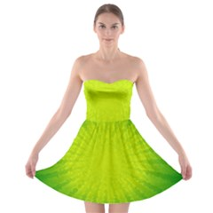 Radial Green Crystals Crystallize Strapless Bra Top Dress