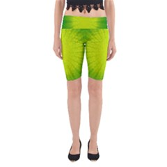 Radial Green Crystals Crystallize Yoga Cropped Leggings