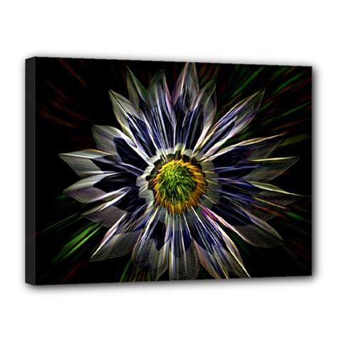 Flower Structure Photo Montage Canvas 16  X 12