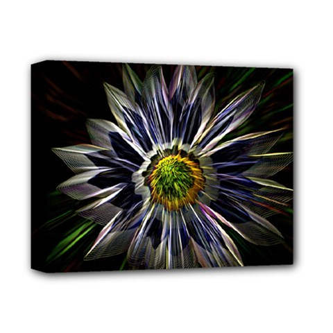 Flower Structure Photo Montage Deluxe Canvas 14  X 11  by BangZart