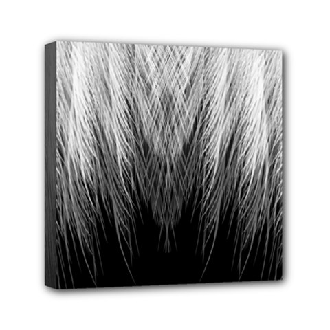 Feather Graphic Design Background Mini Canvas 6  X 6  by BangZart
