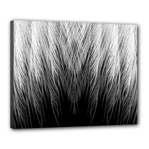 Feather Graphic Design Background Canvas 20  X 16  by BangZart