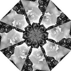 White Rose Black Back Ground Greenery ! Straight Umbrellas by CreatedByMeVictoriaB