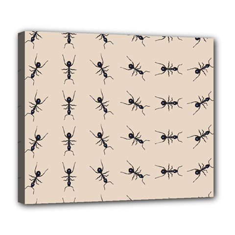 Ants Pattern Deluxe Canvas 24  X 20   by BangZart