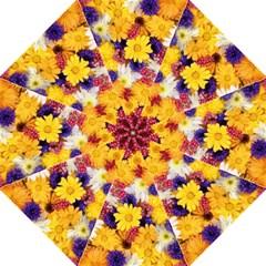Colorful Flowers Pattern Hook Handle Umbrellas (large) by BangZart