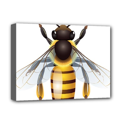 Bee Deluxe Canvas 16  X 12   by BangZart