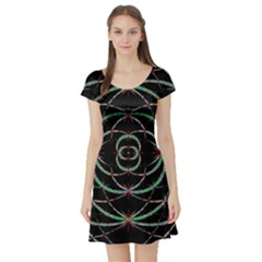 Abstract Spider Web Short Sleeve Skater Dress