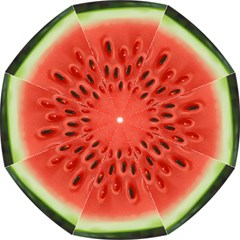 Piece Of Watermelon Straight Umbrellas by BangZart