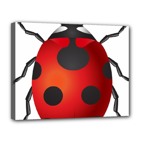 Ladybug Insects Canvas 14  X 11  by BangZart