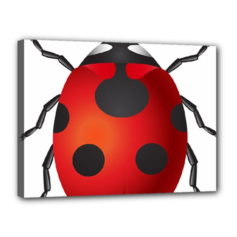 Ladybug Insects Canvas 16  X 12  by BangZart
