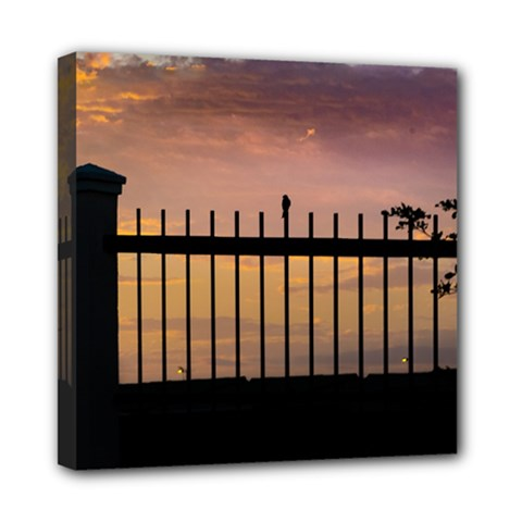 Small Bird Over Fence Backlight Sunset Scene Mini Canvas 8  X 8  by dflcprints