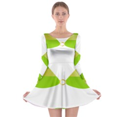 Green Swimsuit Long Sleeve Skater Dress