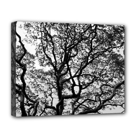 Tree Fractal Deluxe Canvas 20  X 16   by BangZart
