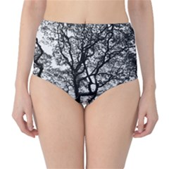 Tree Fractal High Waist Bikini Bottoms