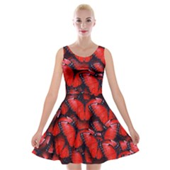 The Red Butterflies Sticking Together In The Nature Velvet Skater Dress