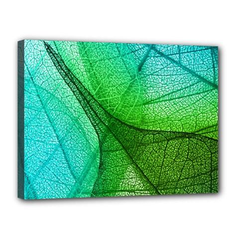 Sunlight Filtering Through Transparent Leaves Green Blue Canvas 16  X 12