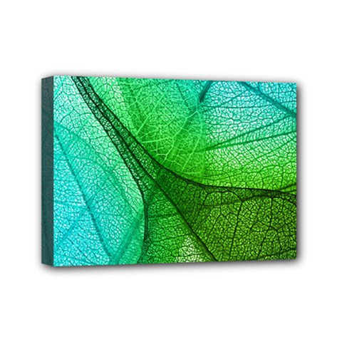 Sunlight Filtering Through Transparent Leaves Green Blue Mini Canvas 7  X 5
