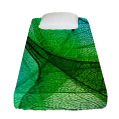 Sunlight Filtering Through Transparent Leaves Green Blue Fitted Sheet (single Size) by BangZart