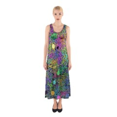 Starbursts Biploar Spring Colors Nature Sleeveless Maxi Dress