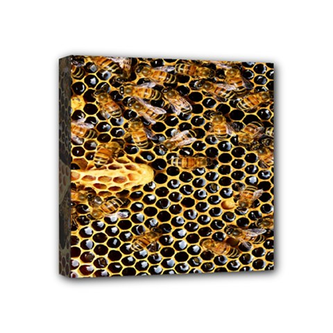 Queen Cup Honeycomb Honey Bee Mini Canvas 4  X 4  by BangZart