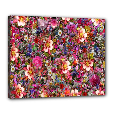 Psychedelic Flower Canvas 20  X 16  by BangZart