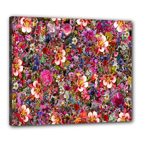 Psychedelic Flower Canvas 24  X 20  by BangZart