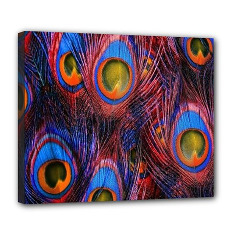 Pretty Peacock Feather Deluxe Canvas 24  X 20   by BangZart