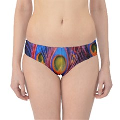Pretty Peacock Feather Hipster Bikini Bottoms