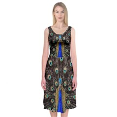Peacock Midi Sleeveless Dress