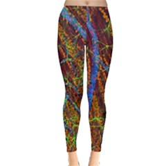Neurobiology Leggings  by BangZart