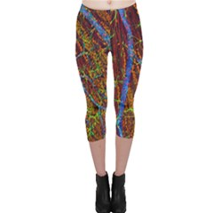 Neurobiology Capri Leggings  by BangZart