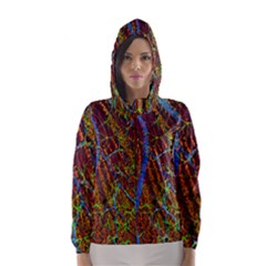 Neurobiology Hooded Wind Breaker (women)