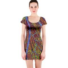Neurobiology Short Sleeve Bodycon Dress