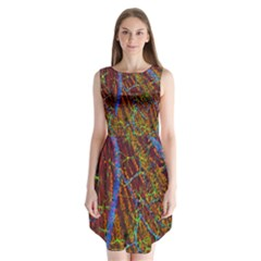 Neurobiology Sleeveless Chiffon Dress   by BangZart