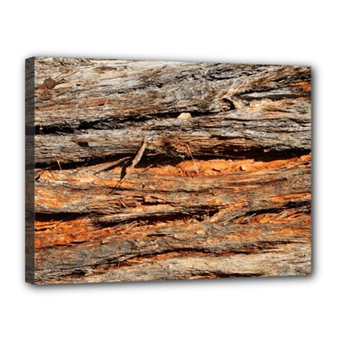 Natural Wood Texture Canvas 16  X 12  by BangZart