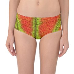 Nature Leaves Mid Waist Bikini Bottoms
