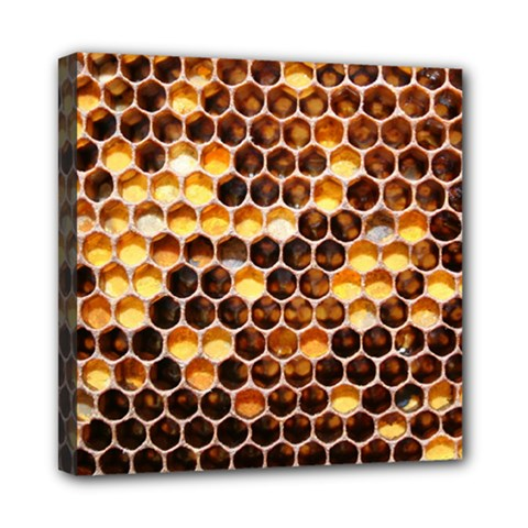 Honey Honeycomb Pattern Mini Canvas 8  X 8