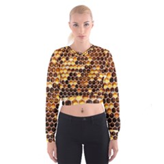 Honey Honeycomb Pattern Cropped Sweatshirt