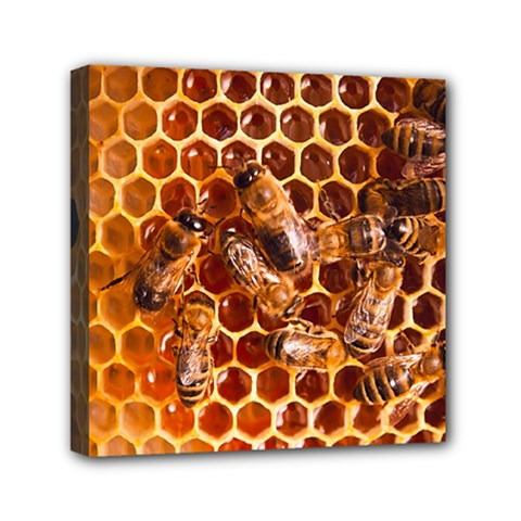 Honey Bees Mini Canvas 6  X 6  by BangZart