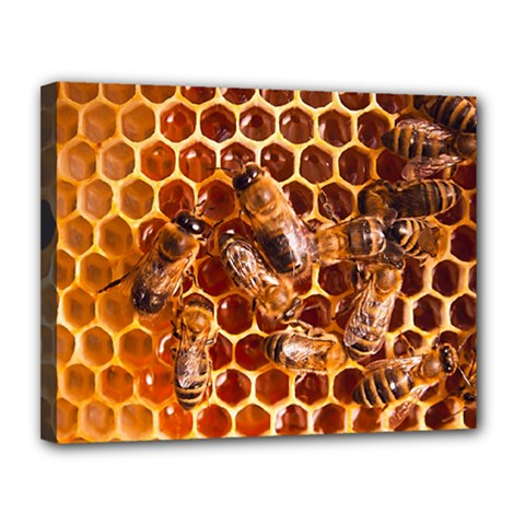 Honey Bees Canvas 14  X 11  by BangZart
