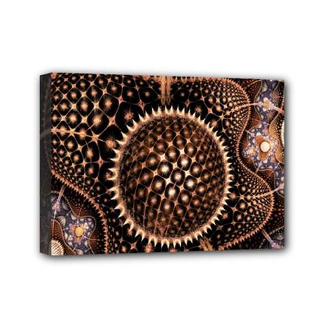 Brown Fractal Balls And Circles Mini Canvas 7  X 5